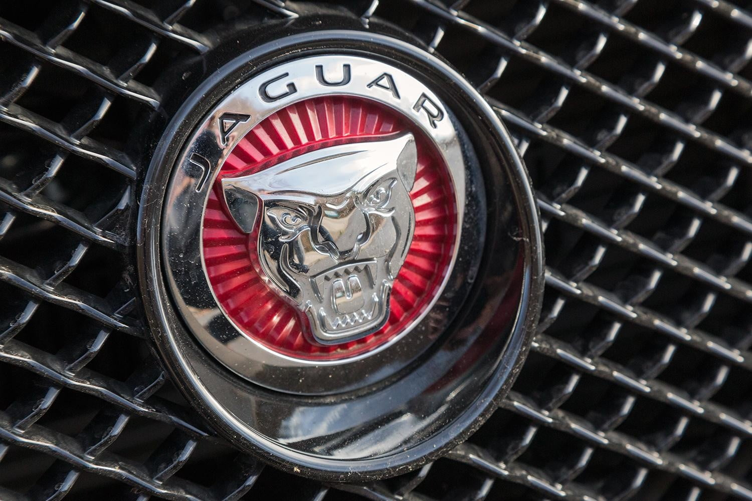 The cubs keep coming as jaguar announces another brand new suv buycottarizona