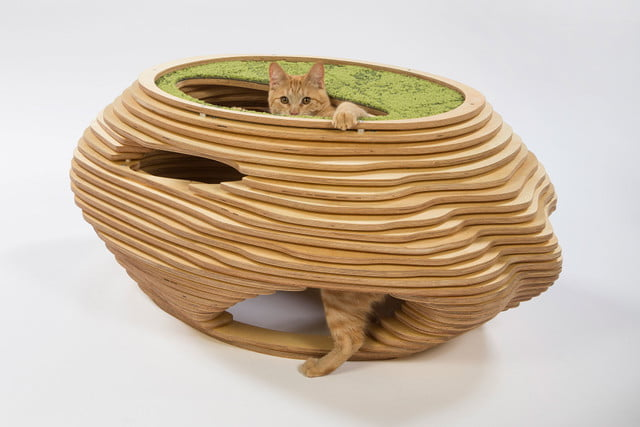 architects for animals design amazing cat houses abramsonteiger  photo credit meghan bob photography