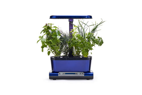 grow your own herbs at home with a smart aerogarden harvest elite