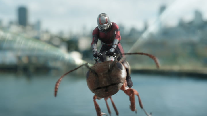 ant man and the wasp review 23