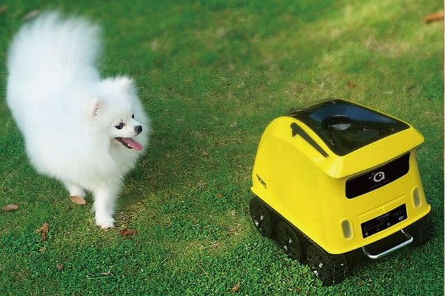 anthouse pet companion robot 1