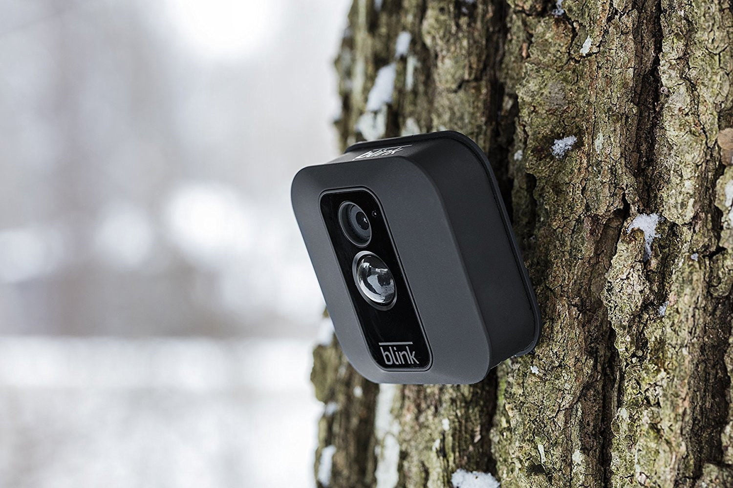 The Blink XT is an AA-powered security cam anyone can afford