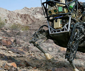 Spirit animals: 9 revolutionary robots inspired by real-world creatures