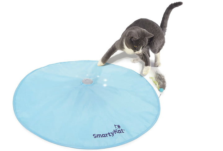 pet gift ideas stocking stuffers christmas cat motion toy