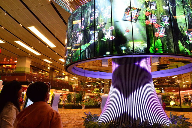 best airports for layovers changi airport the social tree 07