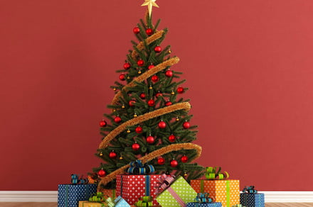 Your Christmas tree might be bright, but here's how to make it smart
