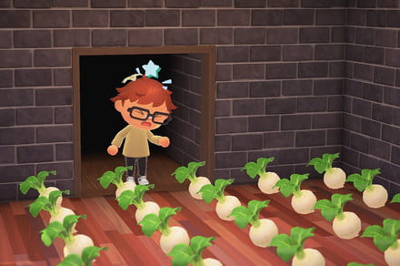 How to play the turnip Stalk Market in Animal Crossing: New Horizons