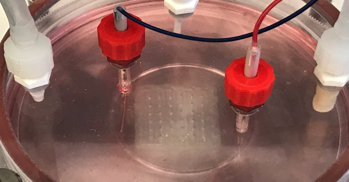 Scientists Can 3D Bioprint Human Heart Tissue Now. The Future is Here