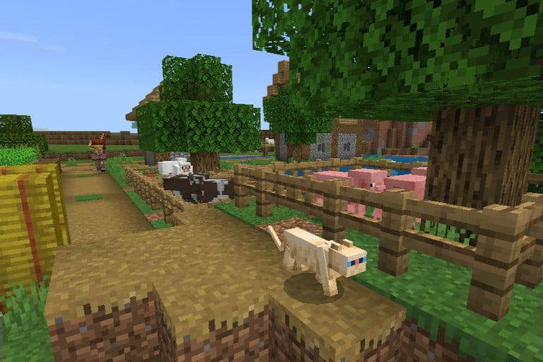 Taming a Cat in Minecraft
