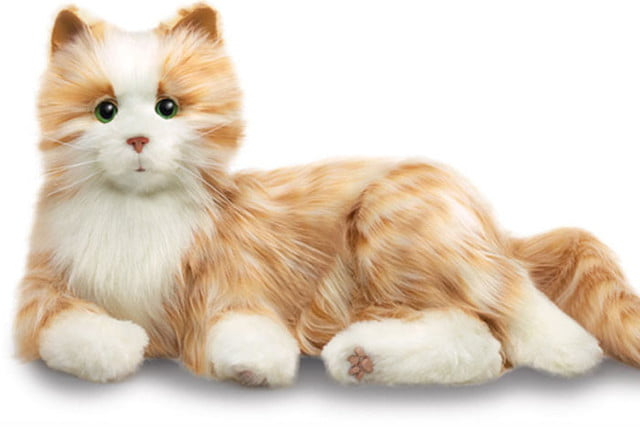 there are now robotic cats that serve as companion animals pet 1