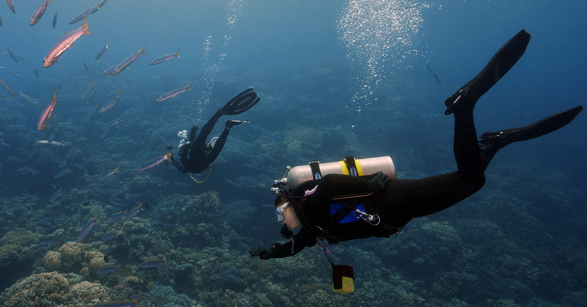 This Underwater Tent Lets Scuba Divers Camp Under the Sea