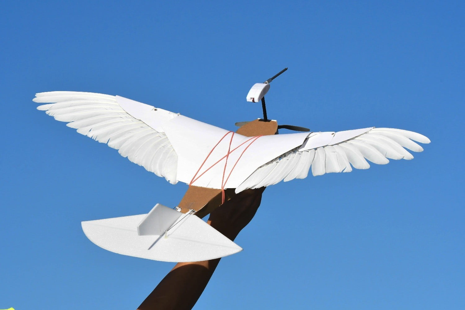 PigeonBot is a drone that flies with feathered wings, just like a real bird