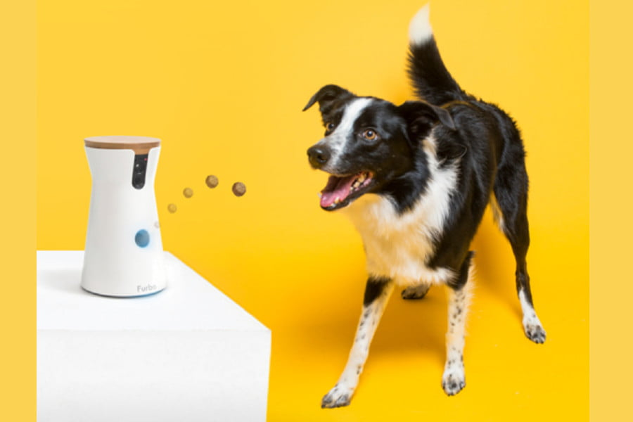 Furbo treat-tossing dog camera $100 off in the Best of Amazon's 12 Days of Deals