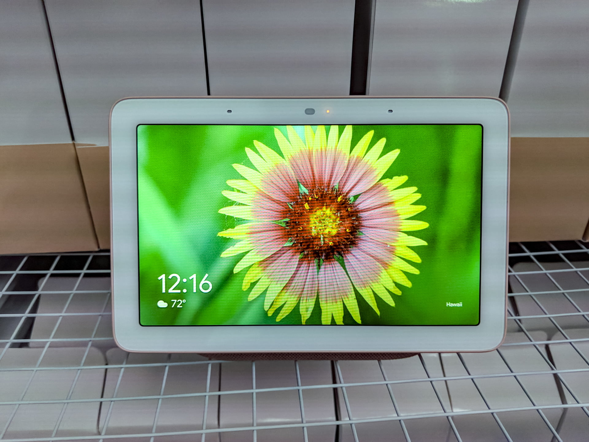 Google Home Hub: Everything You Need to Know | Digital Trends