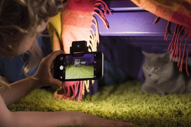 smartphone flash too harsh the iblazr 2 lets you adjust color temperature girl cat