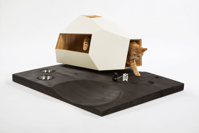 architects for animals design amazing cat houses knowhow shop photo credit meghan bob photography