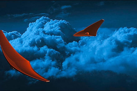 Stingray-inspired craft could glide through the atmosphere of Venus