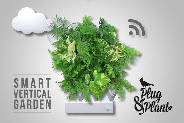 plug and plant is an easy to grow vertical garden  amp