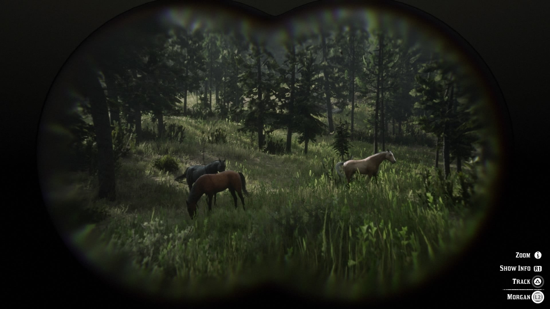 Red Dead Redemption 2 How To Find The Best Horses Digital Trends
