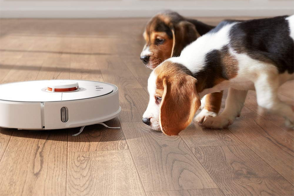 Amazon slashes prices for two Roborock robot vacuum and mop combos