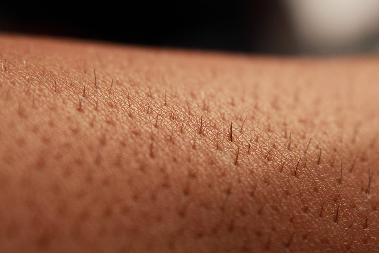 We could be closer than ever to regenerating skin for burn victims