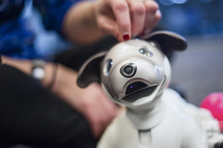 You can now feed Sony's Aibo robot dog with virtual food