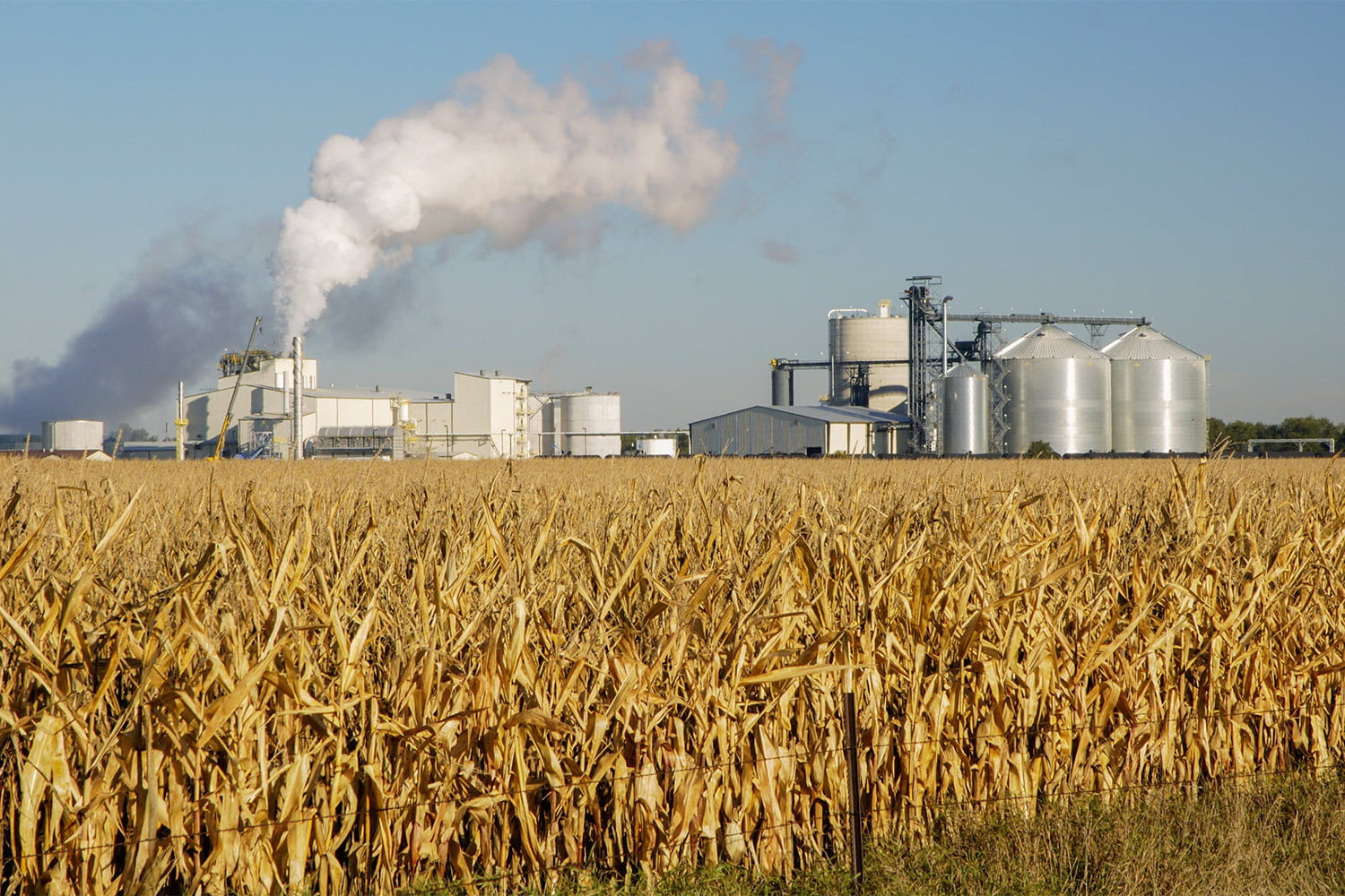 The Truth About Ethanol in Gasoline | Digital Trends