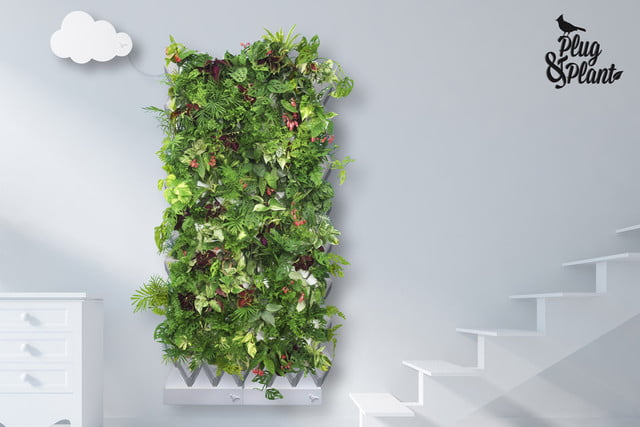 plug and plant is an easy to grow vertical garden green 007