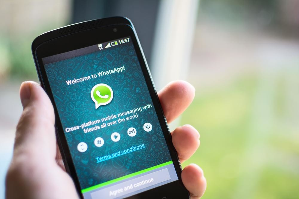 Those new blue check marks in WhatsApp mean your message has been read