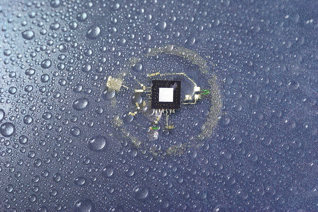 tiny brain sensors dissolve completely after use dissolution of nfc system