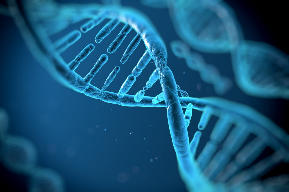 Image result for Microsoft's latest breakthrough could make DNA-based data centers possible