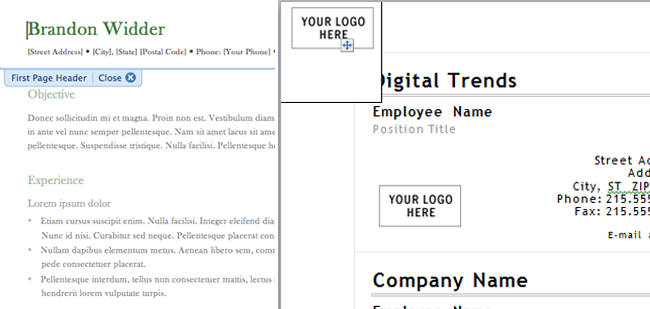 Blank Check Templates For Microsoft Word a Microsoft Word Template