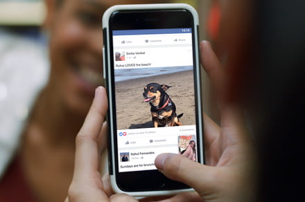 Facebook split news feed could take out the news' with a friends-only feed