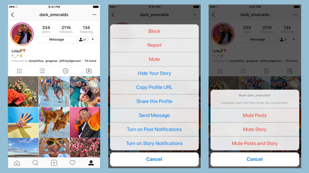 You Can Soon Mute Annoying Friends Clogging Your Instagram Feed