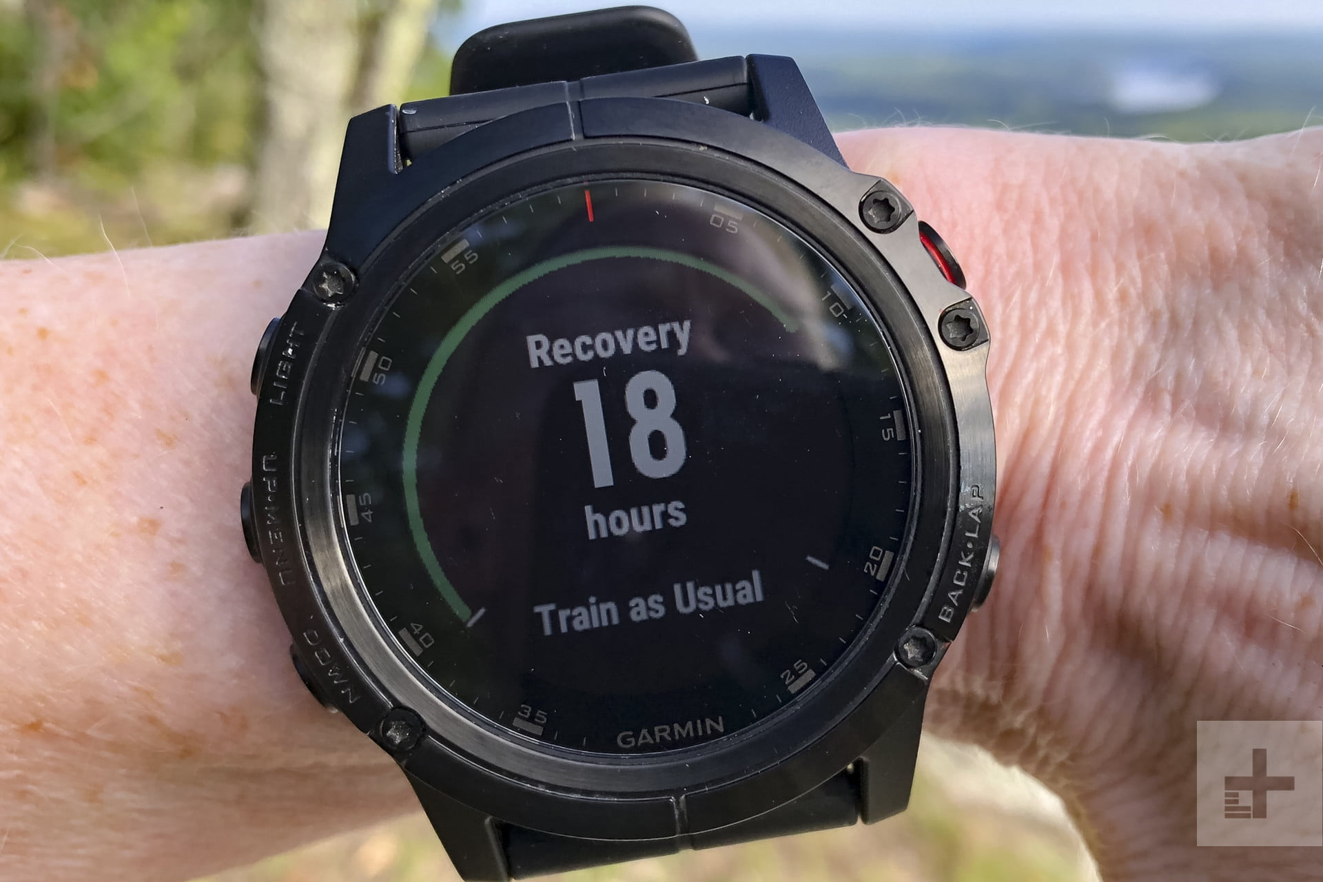 Garmin Fenix 5x Plus Review Digital Trends