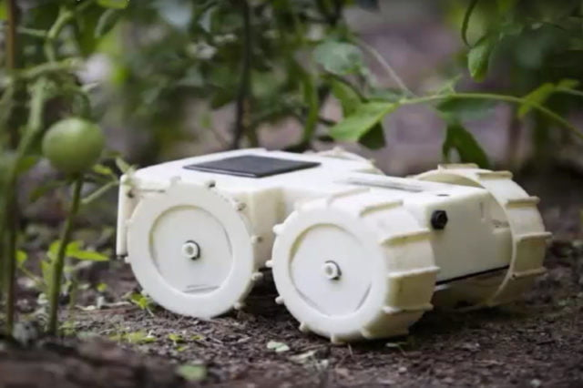 Forget weedkillers — let the Tertill robot keep your garden clear of weeds