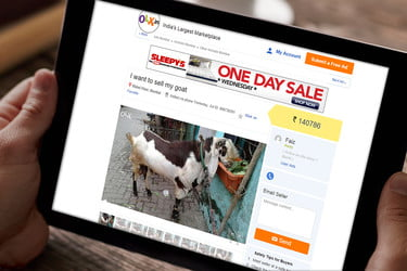 E-Commerce In India Now Includes Goat Sales | Digital Trends