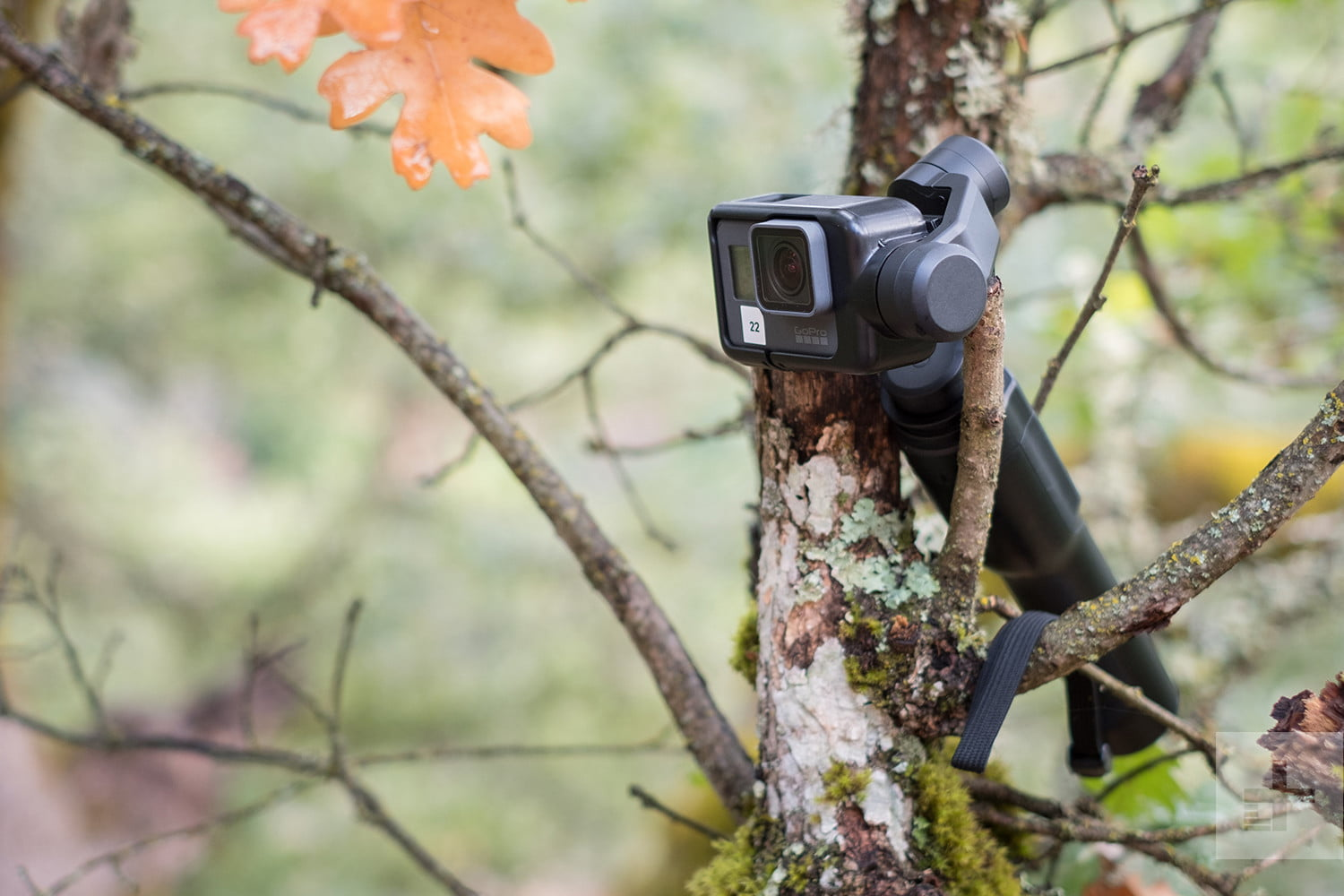 Gopro Karma Grip Review Gimbal For The Hero5 Black Digital Free Acc Shorty