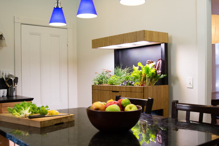 the grove ecosystem launches a kickstarter for its indoor garden a27a4805