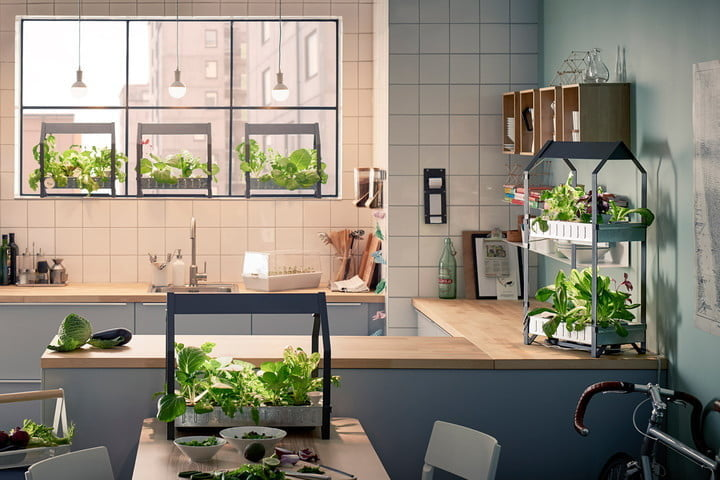 How does your garden grow? Indoors, thanks to these eight devices