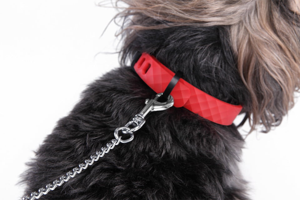 Important Factors To Be Considered When Buying The Dog Collar Gps on