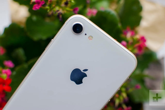 Apple iPhone 8 review flowers