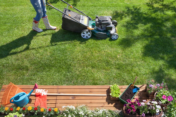 The Best Summer Lawn Care Tips | Digital Trends
