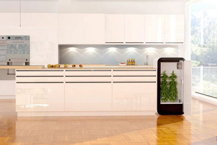 leaf smart home grow box for weed plug n plant & Leaf decided it was high time someone designed a home grow box for ... Aboutintivar.Com