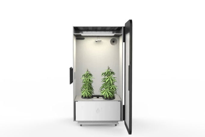 leaf smart home grow box for weed plug n plant  sc 1 st  Digital Trends & Leaf decided it was high time someone designed a home grow box for ... Aboutintivar.Com
