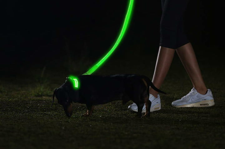 pet gift ideas stocking stuffers christmas led collar