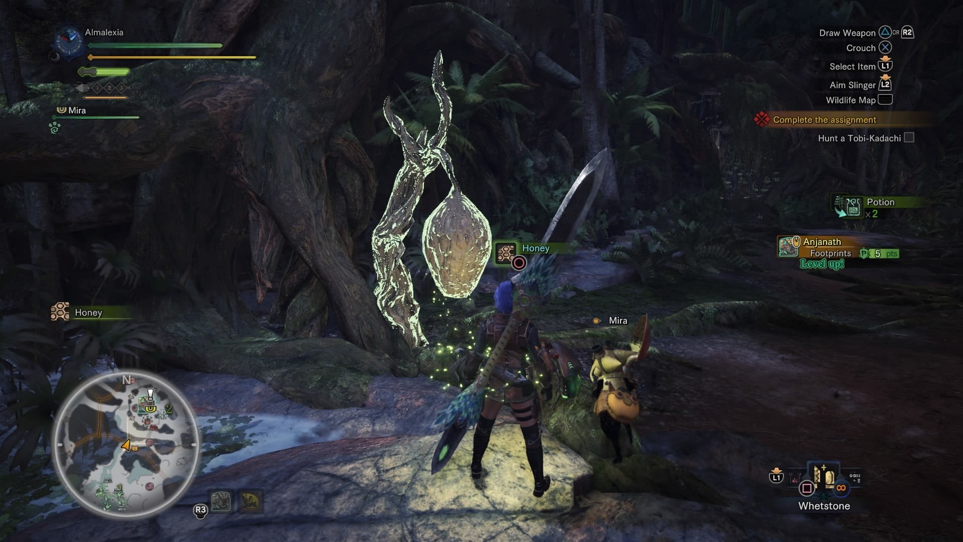 Learn to make potions traps with our monster hunter for Decoration list monster hunter world