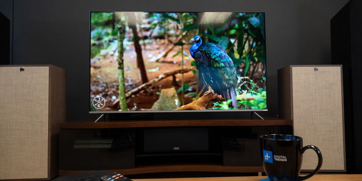 Vizio P-Series (P65-F1) review