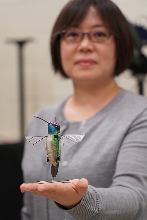 Purdue's robotic hummingbird is nearly as nimble as the real thing
