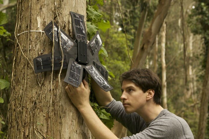 rainforest connection smartphone forest defender news array